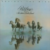 Bob Seger And The Silver Bullet Band Against The Wind Album Cover